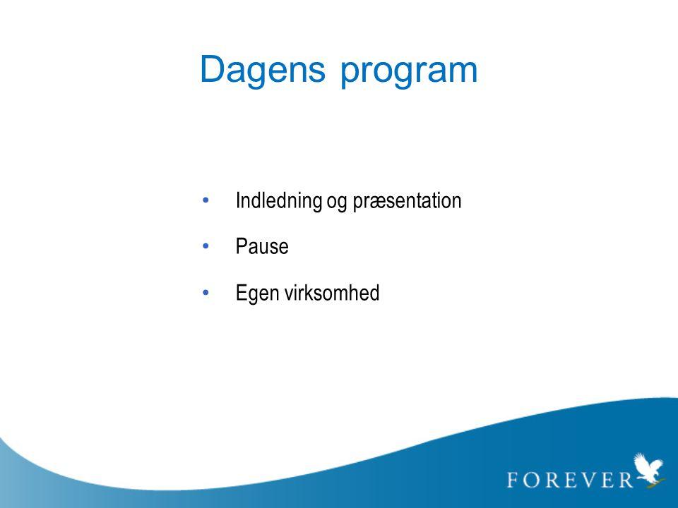 Dagens program • Indledning og præsentation • Pause • Egen virksomhed