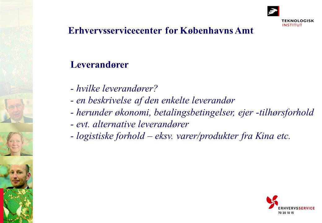 Erhvervsservicecenter for Københavns Amt Leverandører - hvilke leverandører? - en beskrivelse af den enkelte leverandør - herunder økonomi, betalingsb