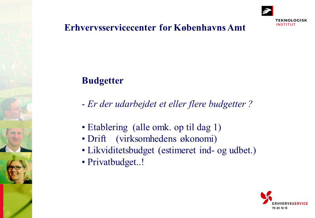 Erhvervsservicecenter for Københavns Amt Budgetter - Er der udarbejdet et eller flere budgetter ? • Etablering (alle omk. op til dag 1) • Drift (virks