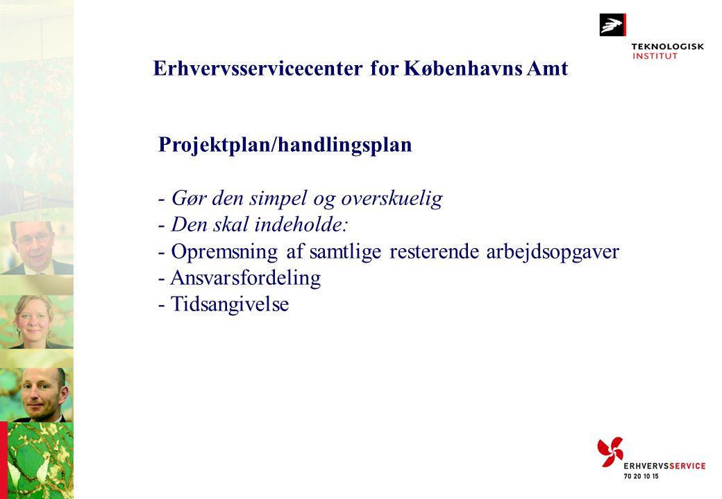 Erhvervsservicecenter for Københavns Amt Projektplan/handlingsplan - Gør den simpel og overskuelig - Den skal indeholde: - Opremsning af samtlige rest