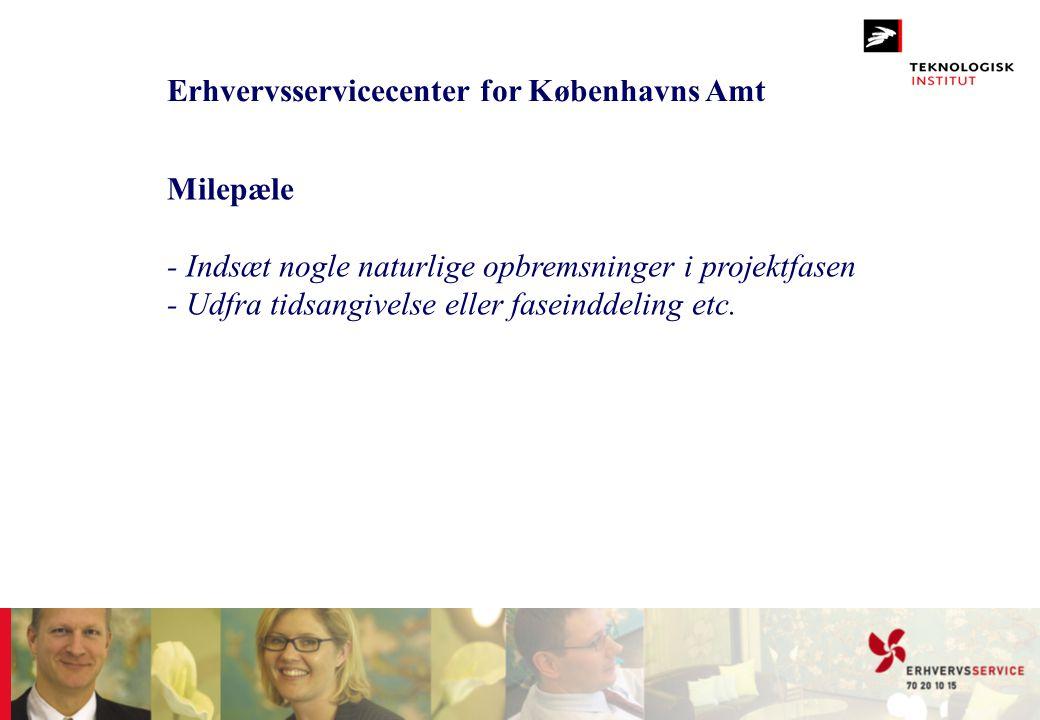 Erhvervsservicecenter for Københavns Amt Milepæle - Indsæt nogle naturlige opbremsninger i projektfasen - Udfra tidsangivelse eller faseinddeling etc.