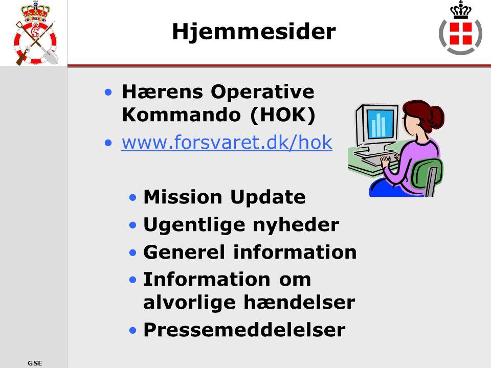 GSE I nformation (hvordan) •Fra enheden i missionsområdet •Beskrivelse af den aktuelle situation og livet i DABG og enhederne.