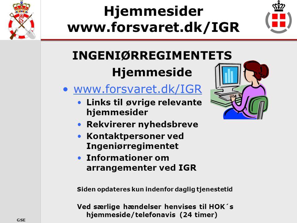 GSE TRYK 1 – 3 – 1 for ST & LOG (herunder IGDET)