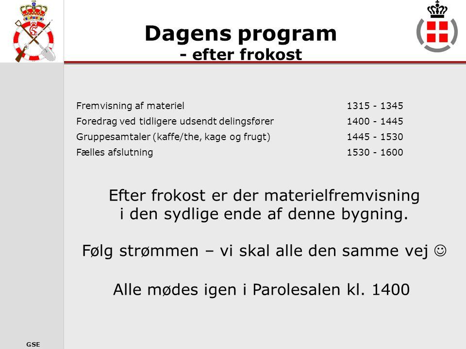GSE SPØRGSMÅL