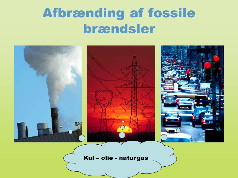 Afbrænding af fossile brændsler Pollution from coal, natural gas, and oil Kul – olie - naturgas