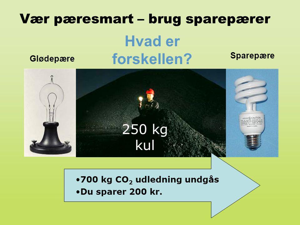 Vær pæresmart – brug sparepærer Glødepære Sparepære 250 kg kul Hvad er forskellen? •700 kg CO 2 udledning undgås •Du sparer 200 kr.