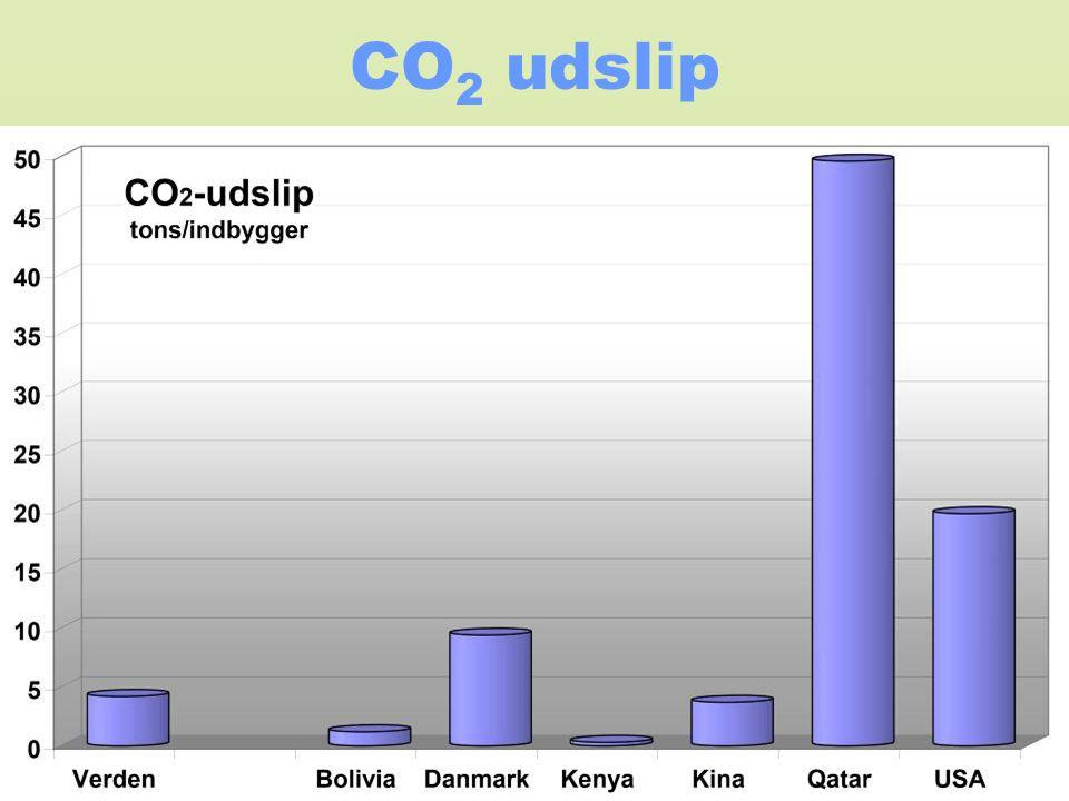 CO 2 udslip