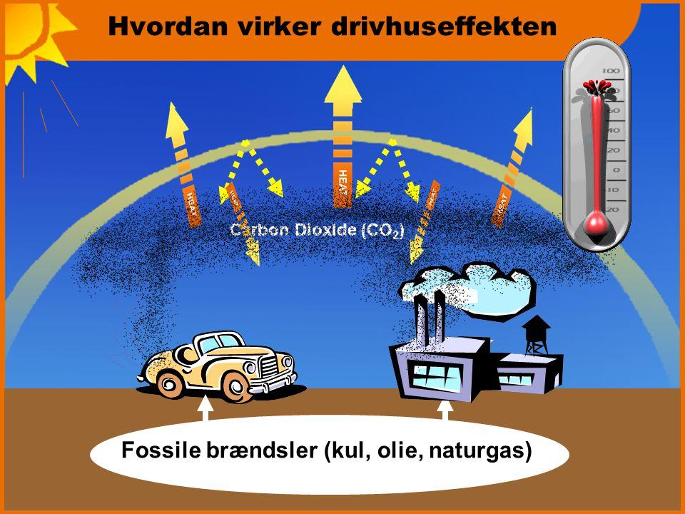 Hvordan virker drivhuseffekten Fossile brændsler (kul, olie, naturgas) Carbon Dioxide (CO 2 )