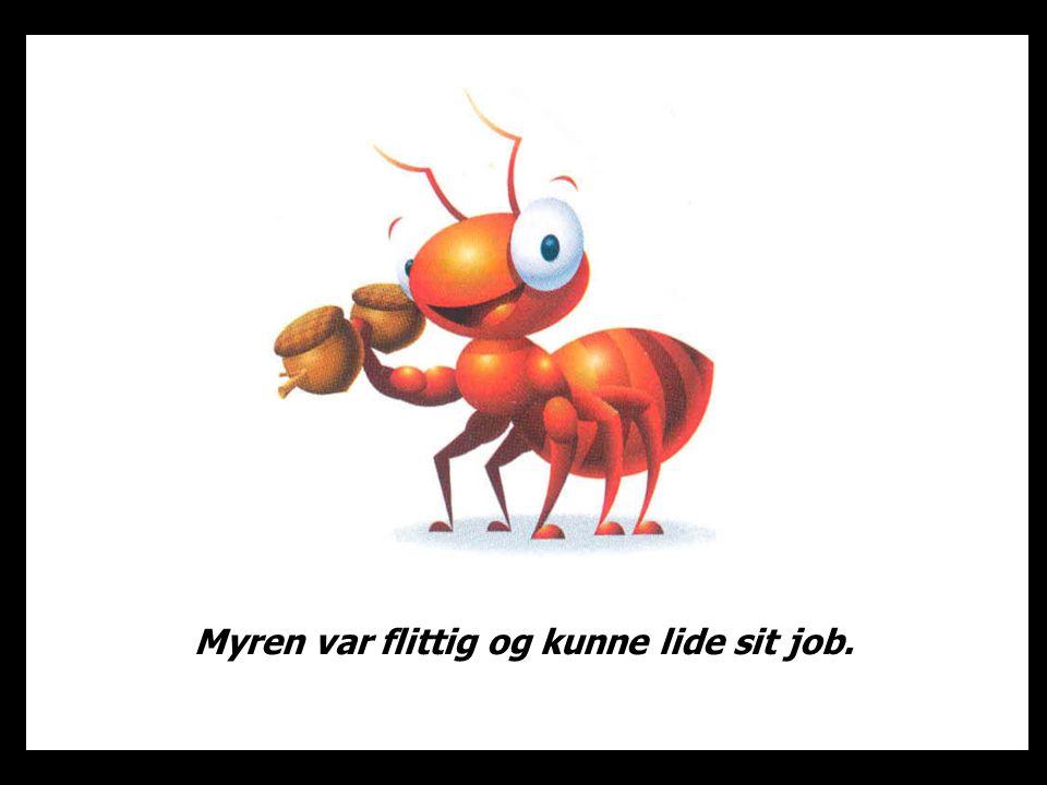 Myren var flittig og kunne lide sit job.