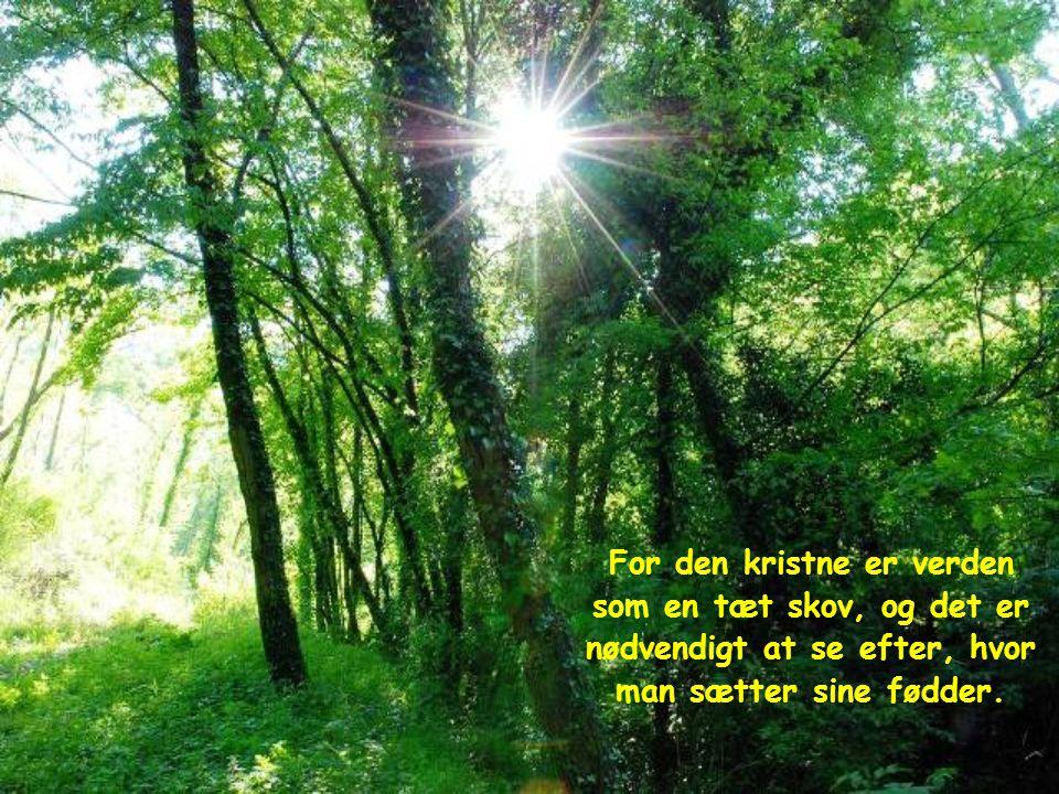 Verden strømmer imod dig som en rivende flod, og du må gå imod strømmen. Den kristnes liv er ikke behageligt og roligt; og Kristus beder dig heller ik