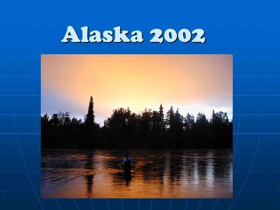 23 – 24 Juni Vi startede dagen med at krydse over 3 af de 4 elvløb og fiskede i hovedfloden Susitna.