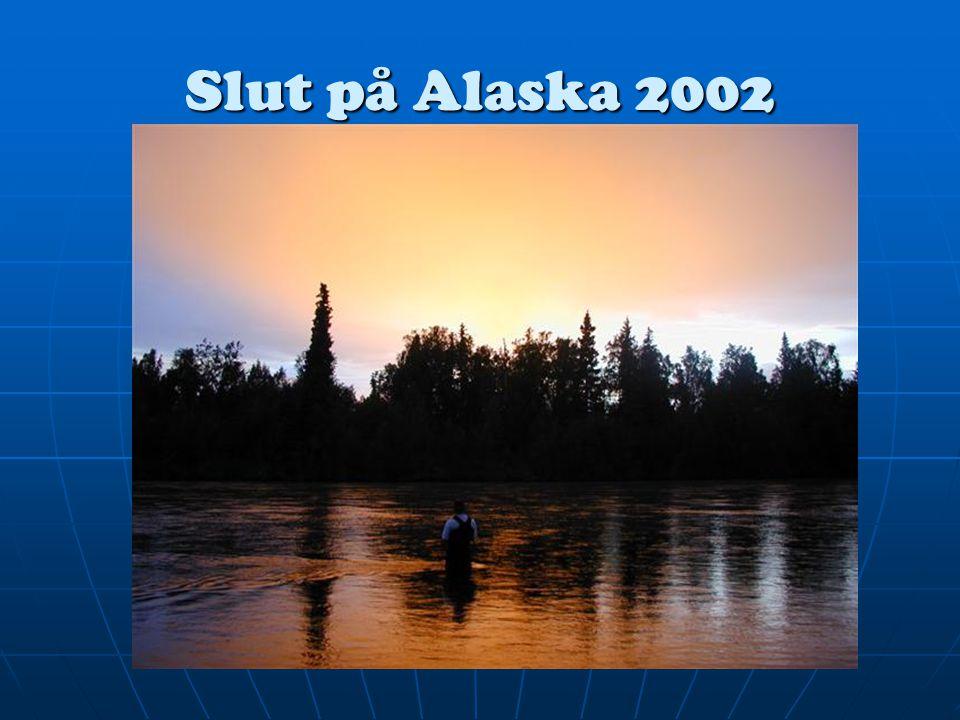 Slut på Alaska 2002