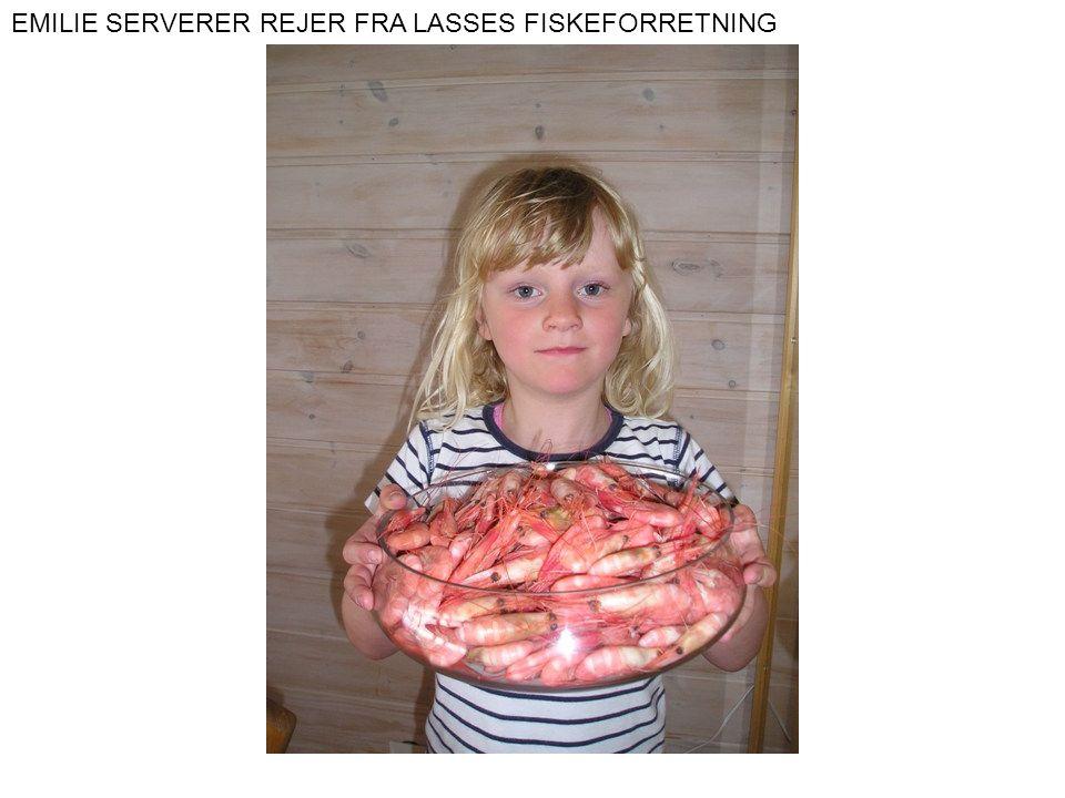 EMILIE SERVERER REJER FRA LASSES FISKEFORRETNING