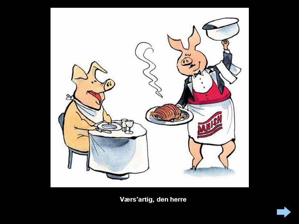 Endnu et billede af det muntre liv i svinebranchen: Det er uklart om det, vi ser, er svinebaroner på søndagsudflugt eller bare luksusudgaven af den kannibalisme, som er ret udbredt blandt slagtesvin.