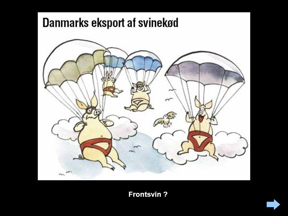 Branchen erkender her, at der måske er lige lovlig mange svin i Danmark. Branchens strategi er at se problemerne i øjnene og levere hurtige og effekti