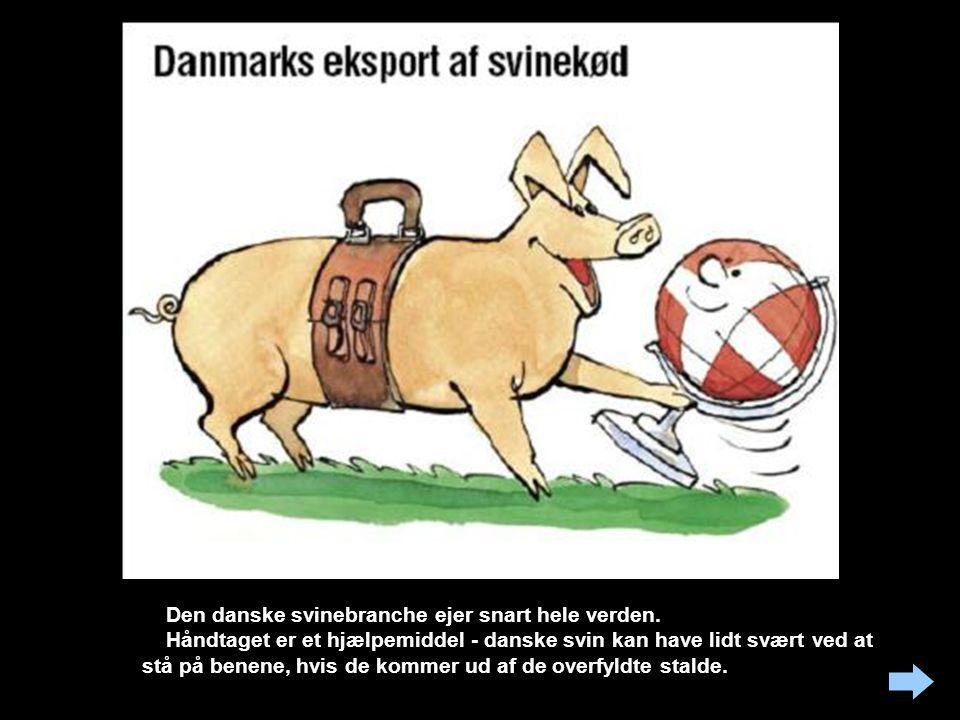 Den danske svinebranche ejer snart hele verden.