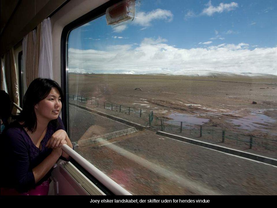 Joey elsker landskabet, der skifter uden for hendes vindue