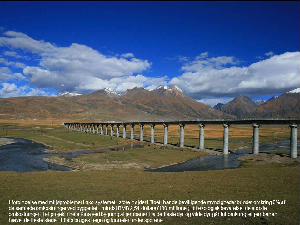 I forbindelse med miljøproblemer i øko-systemet i store højder i Tibet, har de bevilligende myndigheder bundet omkring 8% af de samlede omkostninger v