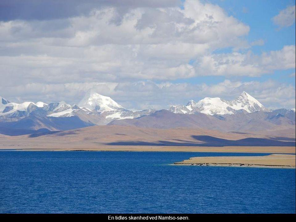 En tidløs skønhed ved Namtso-søen.