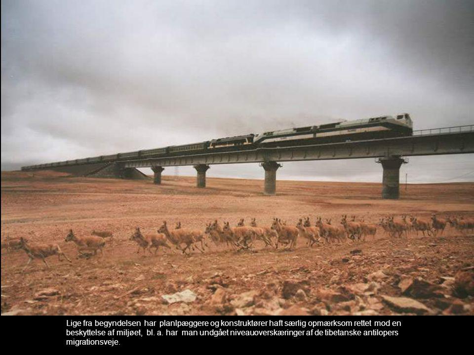Lige fra begyndelsen har planlpæggere og konstruktører haft særlig opmærksom rettet mod en beskyttelse af miljøet, bl. a. har man undgået niveauoversk