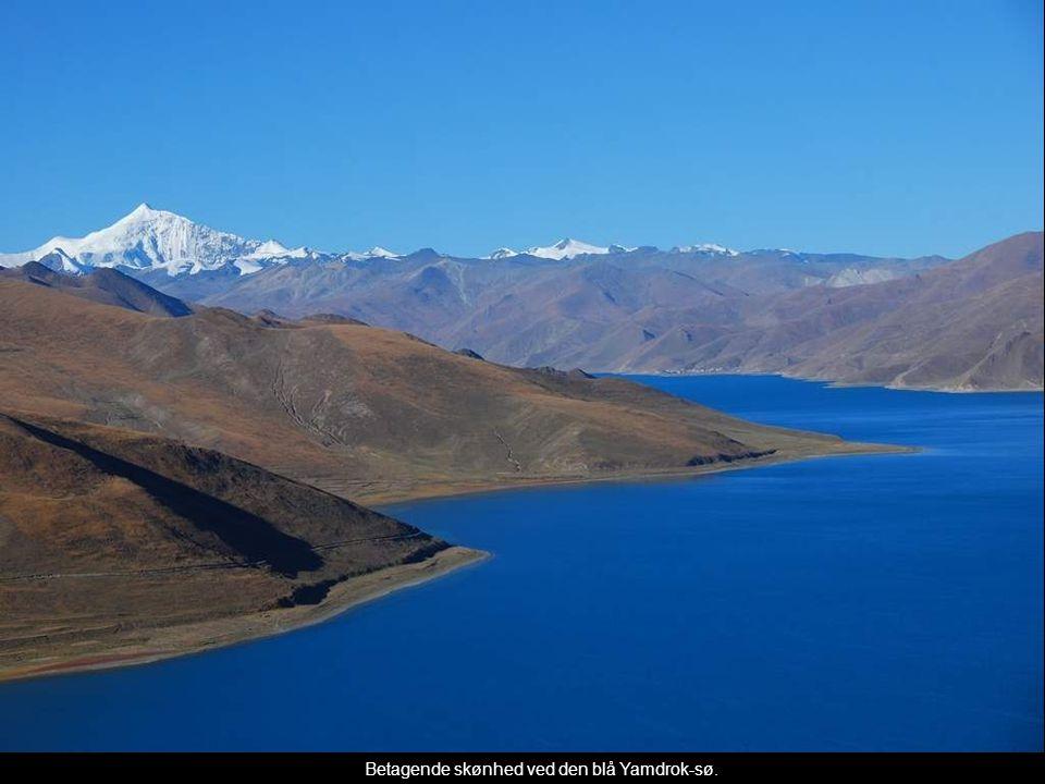 Betagende skønhed ved den blå Yamdrok-sø.