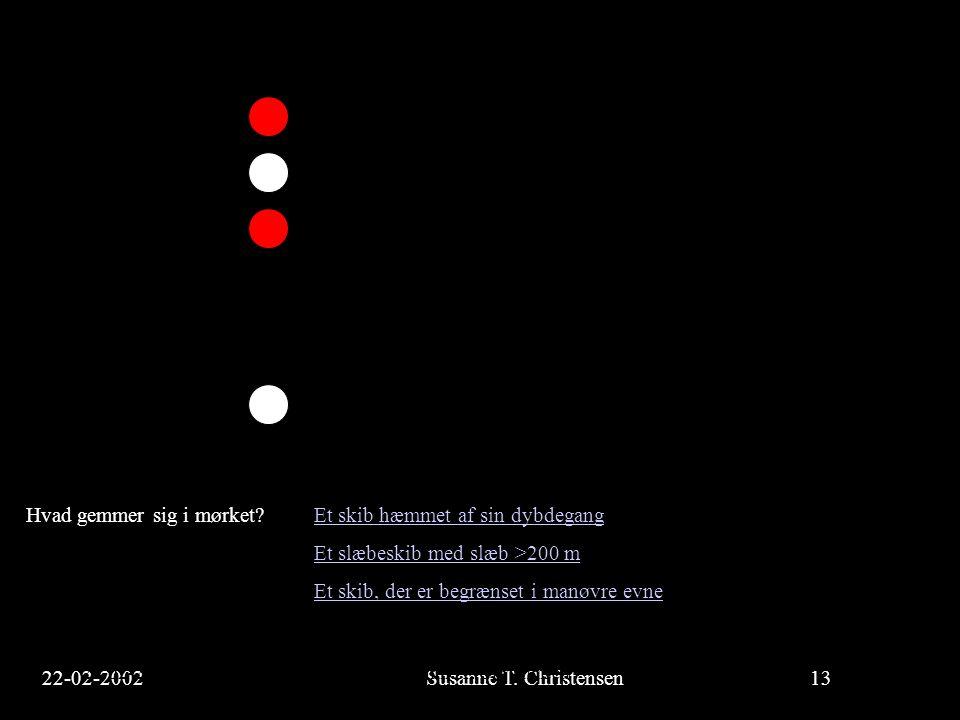 22-02-2002Susanne T. Christensen13 23-02-2002Susanne T. Christensen13 Hvad gemmer sig i mørket? Et skib hæmmet af sin dybdegangEt skib hæmmet af sin d