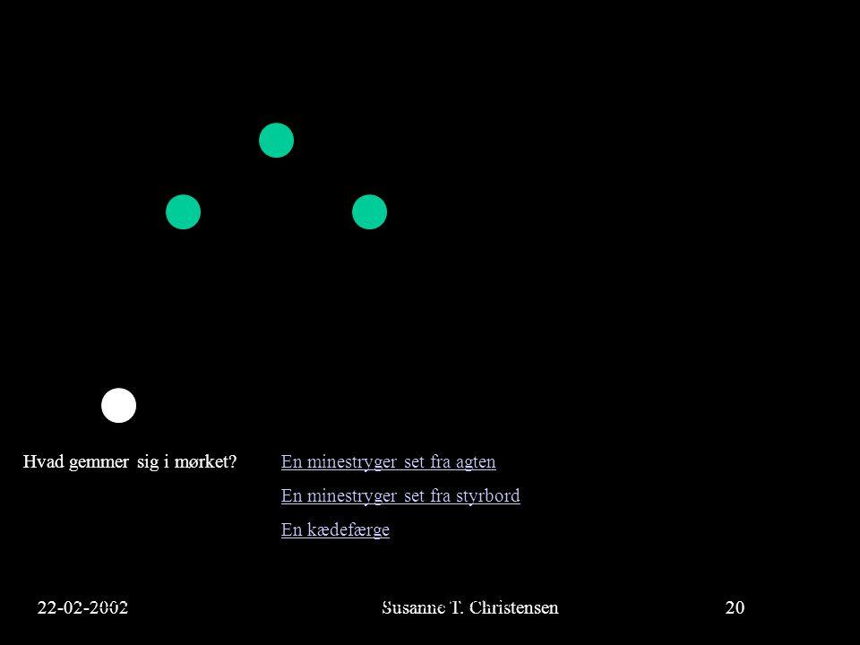 22-02-2002Susanne T. Christensen20 23-02-2002Susanne T. Christensen20 Hvad gemmer sig i mørket? En minestryger set fra agtenEn minestryger set fra agt