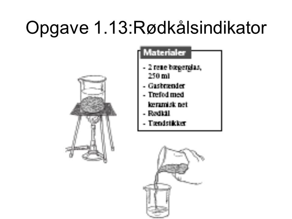 Opgave 1.13:Rødkålsindikator