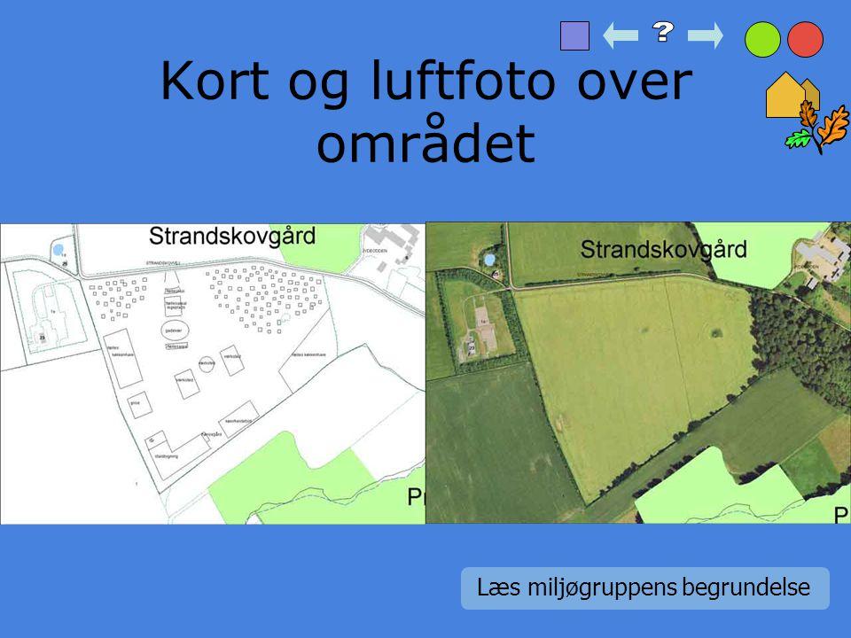 Fællesarealer I økolandsbyen skal der også være en masse fællesarealer.