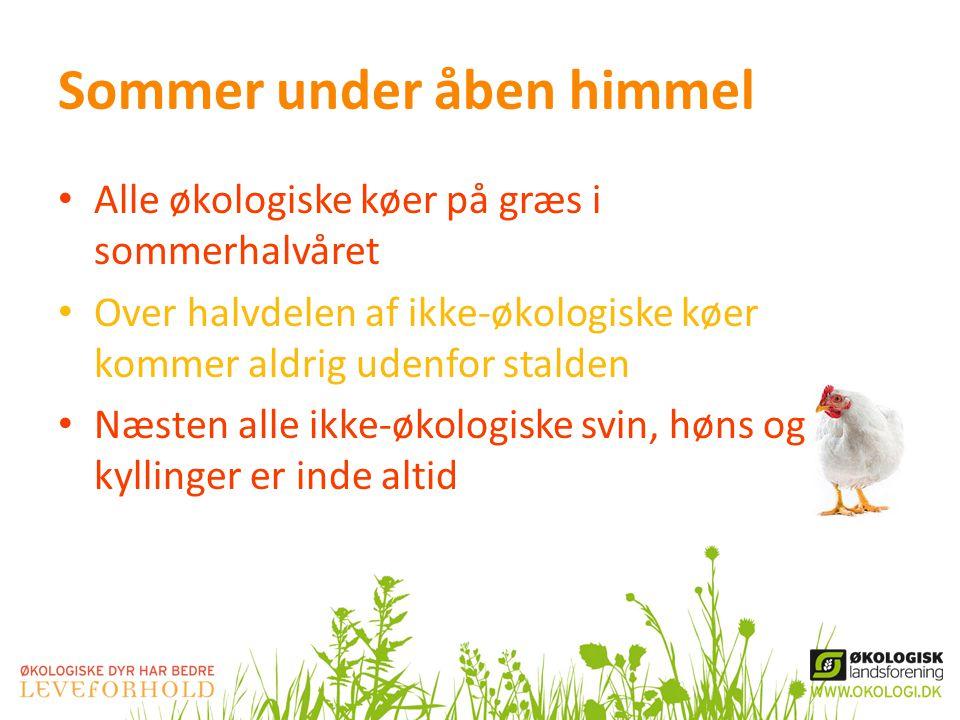 Sommer under åben himmel • Alle økologiske køer på græs i sommerhalvåret • Over halvdelen af ikke-økologiske køer kommer aldrig udenfor stalden • Næsten alle ikke-økologiske svin, høns og kyllinger er inde altid