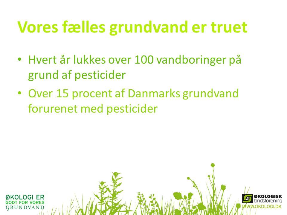 Vores fælles grundvand er truet • Hvert år lukkes over 100 vandboringer på grund af pesticider • Over 15 procent af Danmarks grundvand forurenet med pesticider