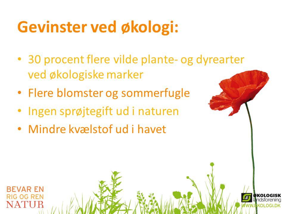 Gevinster ved økologi: • 30 procent flere vilde plante- og dyrearter ved økologiske marker • Flere blomster og sommerfugle • Ingen sprøjtegift ud i naturen • Mindre kvælstof ud i havet