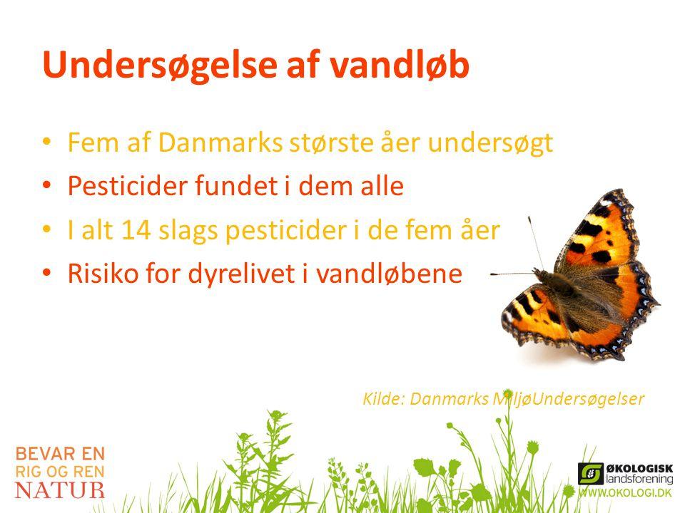 Undersøgelse af vandløb • Fem af Danmarks største åer undersøgt • Pesticider fundet i dem alle • I alt 14 slags pesticider i de fem åer • Risiko for dyrelivet i vandløbene Kilde: Danmarks MiljøUndersøgelser