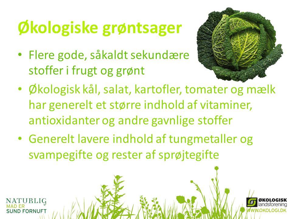 Økologiske grøntsager • Flere gode, såkaldt sekundære stoffer i frugt og grønt • Økologisk kål, salat, kartofler, tomater og mælk har generelt et stør