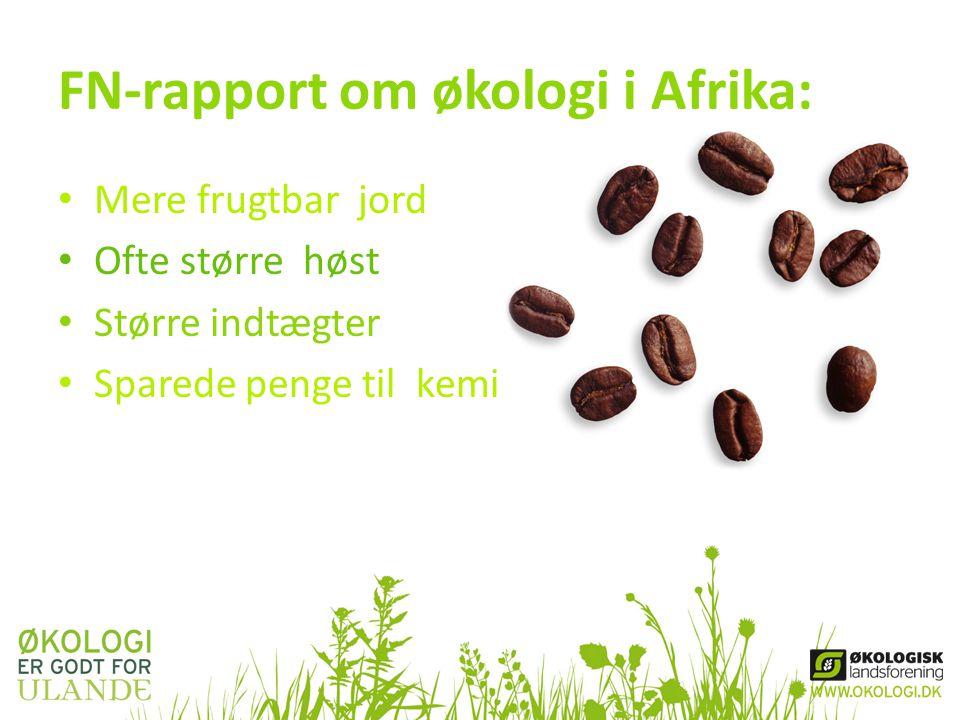 FN-rapport om økologi i Afrika: • Mere frugtbar jord • Ofte større høst • Større indtægter • Sparede penge til kemi