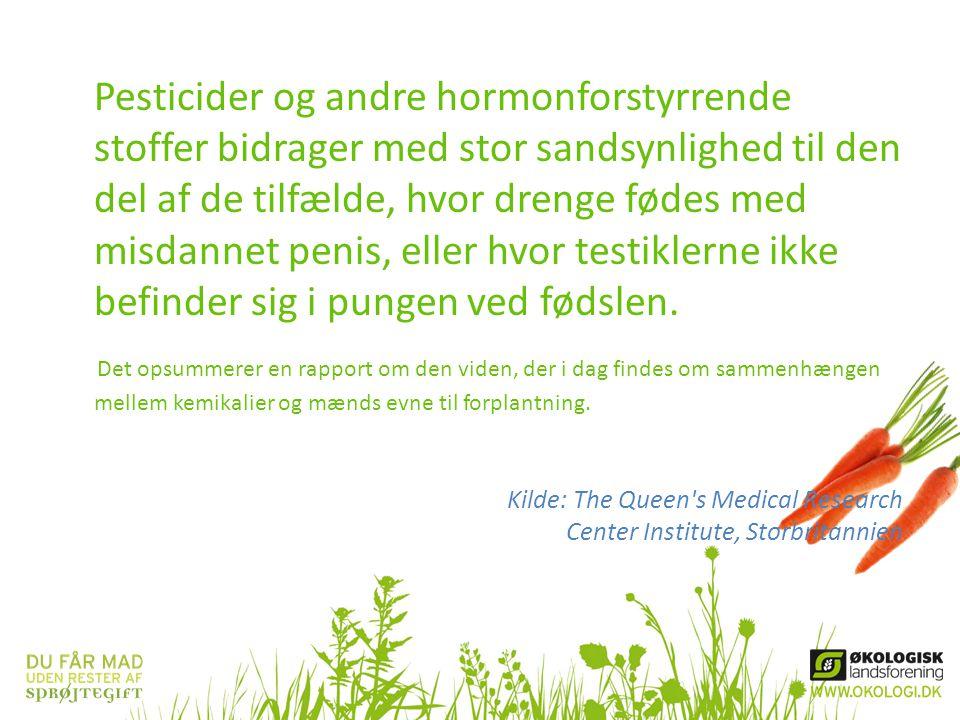 Pesticider og andre hormonforstyrrende stoffer bidrager med stor sandsynlighed til den del af de tilfælde, hvor drenge fødes med misdannet penis, elle