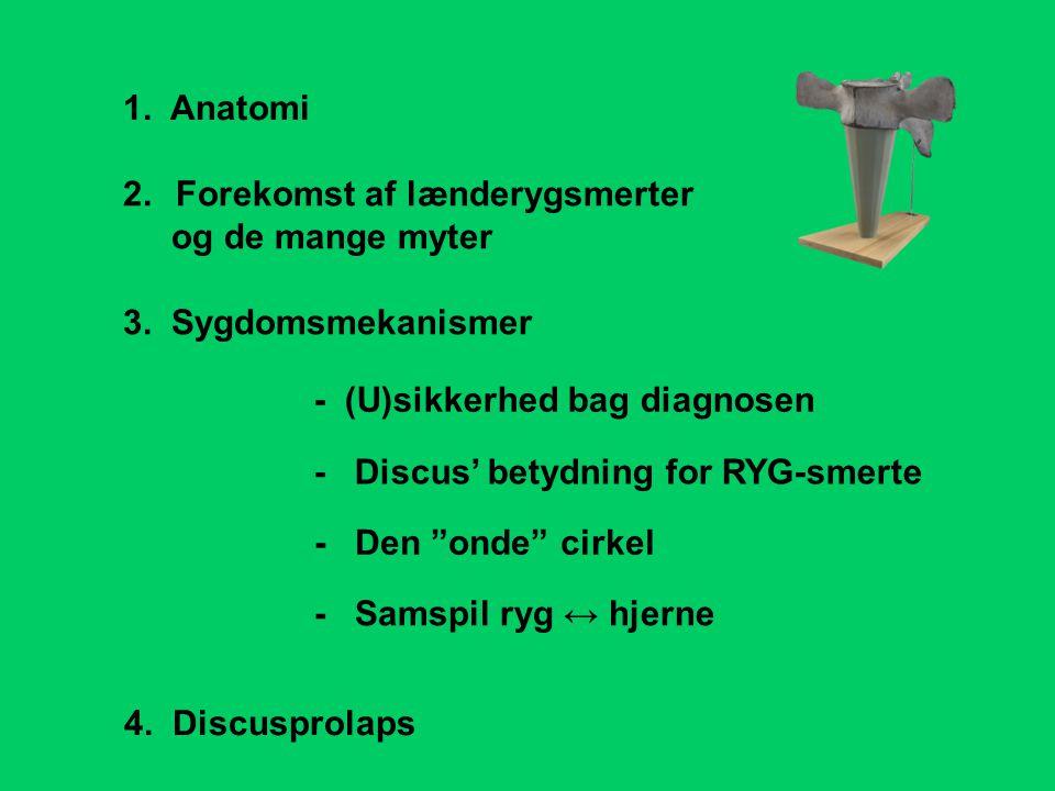 - Discus' betydning for RYG-smerte 1. Anatomi 2.Forekomst af lænderygsmerter og de mange myter 3. Sygdomsmekanismer - (U)sikkerhed bag diagnosen 4. Di