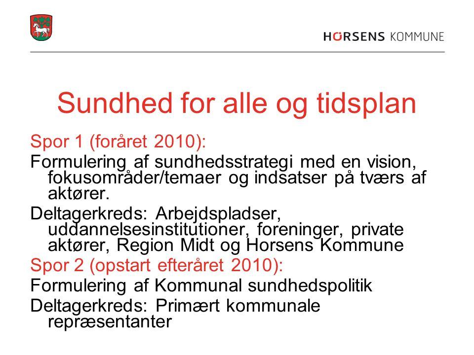 Sundhed for alle og tidsplan Spor 1 (foråret 2010): Formulering af sundhedsstrategi med en vision, fokusområder/temaer og indsatser på tværs af aktøre