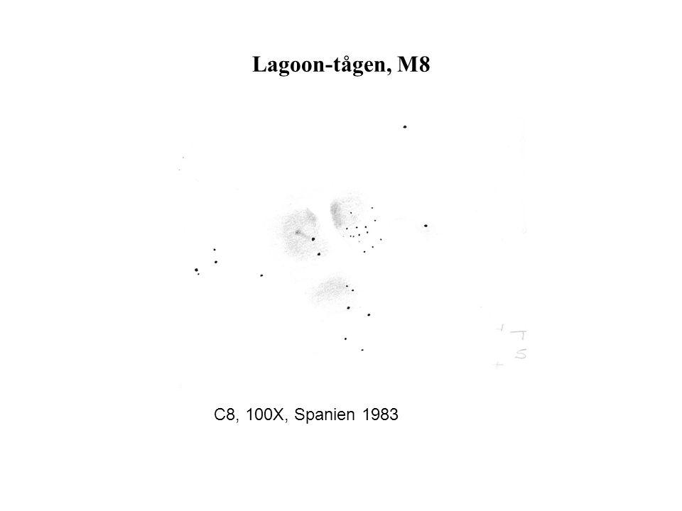Lagoon-tågen, M8 C8, 100X, Spanien 1983