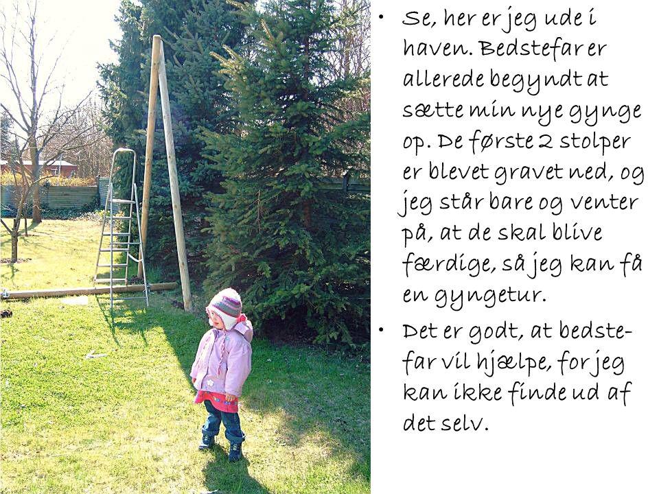 •Se, her er jeg ude i haven. Bedstefar er allerede begyndt at sætte min nye gynge op. De første 2 stolper er blevet gravet ned, og jeg står bare og ve