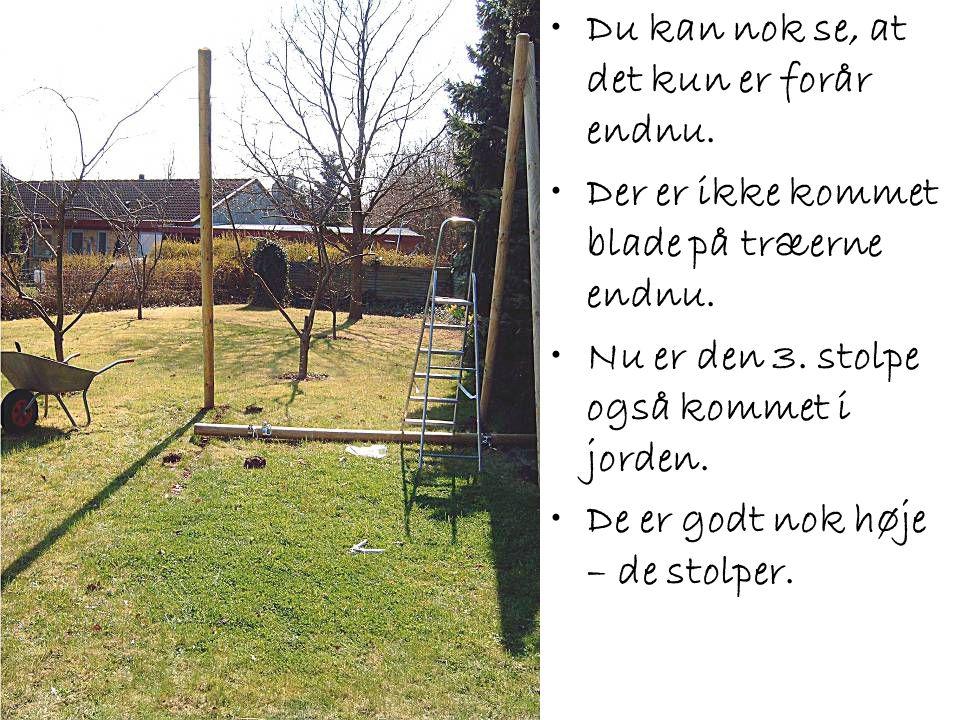 •Du kan nok se, at det kun er forår endnu. •Der er ikke kommet blade på træerne endnu. •Nu er den 3. stolpe også kommet i jorden. •De er godt nok høje
