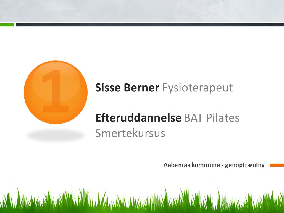 Sisse Berner Fysioterapeut Efteruddannelse BAT Pilates Smertekursus Aabenraa kommune - genoptræning 1