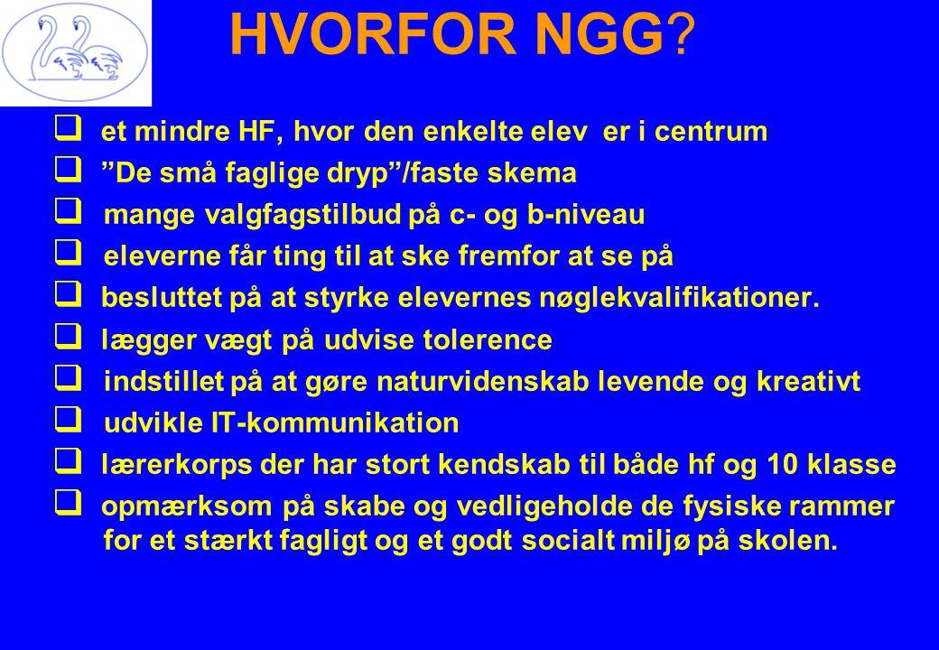 HVORFOR NGG.