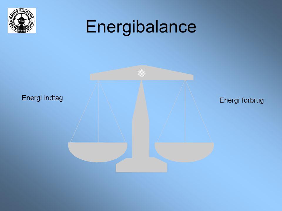 Energibalance Energi indtag Energi forbrug