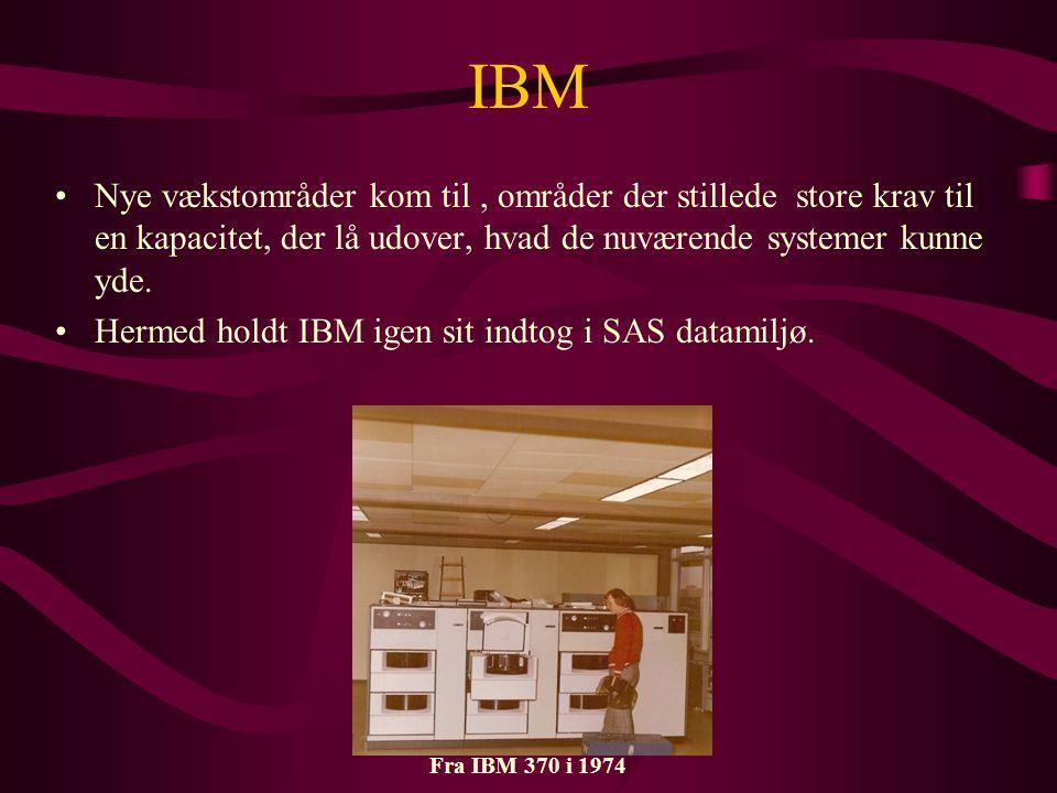 IBM •Nye vækstområder kom til, områder der stillede store krav til en kapacitet, der lå udover, hvad de nuværende systemer kunne yde.