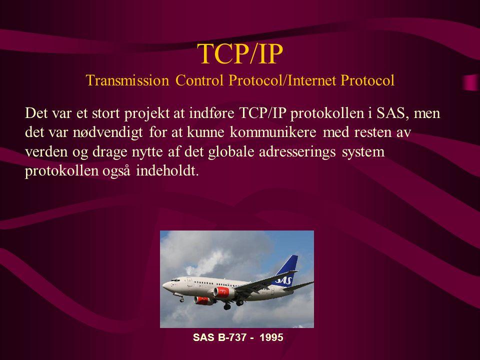 TCP/IP Transmission Control Protocol/Internet Protocol Det var et stort projekt at indføre TCP/IP protokollen i SAS, men det var nødvendigt for at kunne kommunikere med resten av verden og drage nytte af det globale adresserings system protokollen også indeholdt.