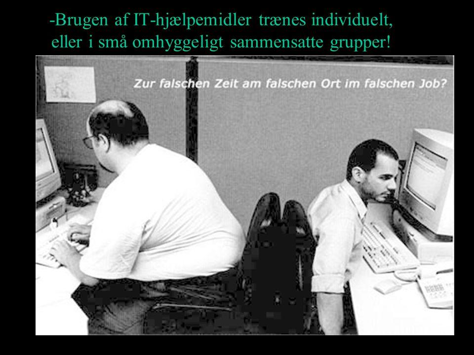 -Brugen af IT-hjælpemidler trænes individuelt, eller i små omhyggeligt sammensatte grupper!