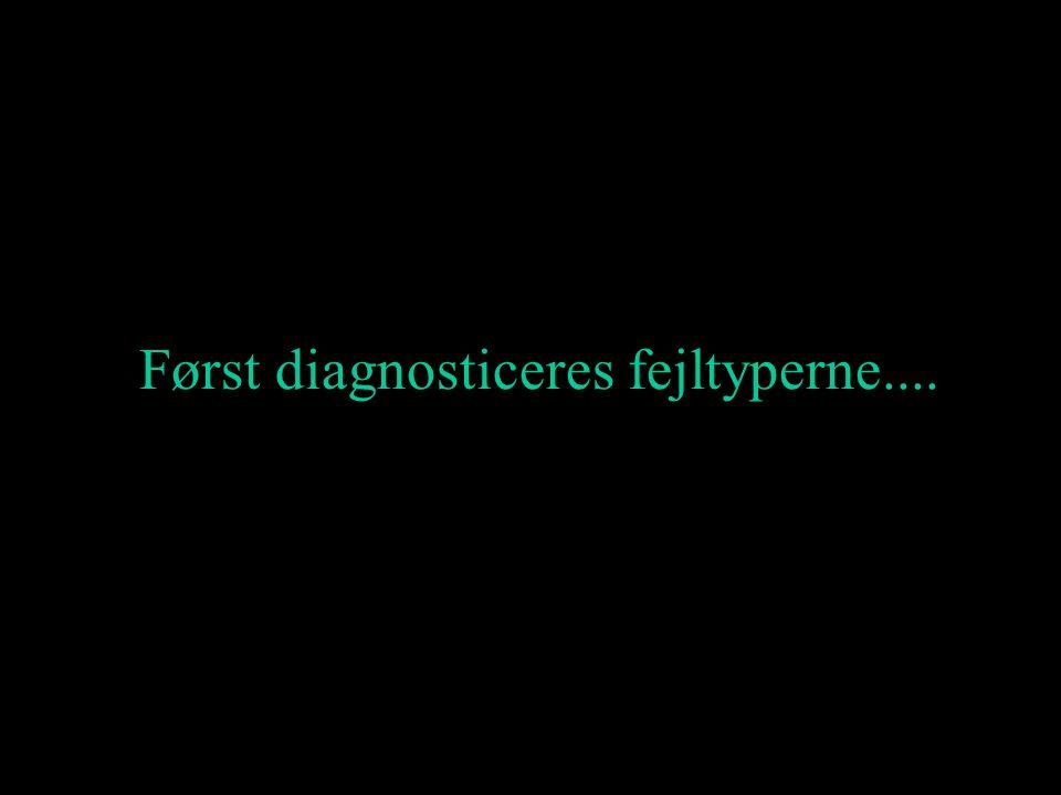 Først diagnosticeres fejltyperne....