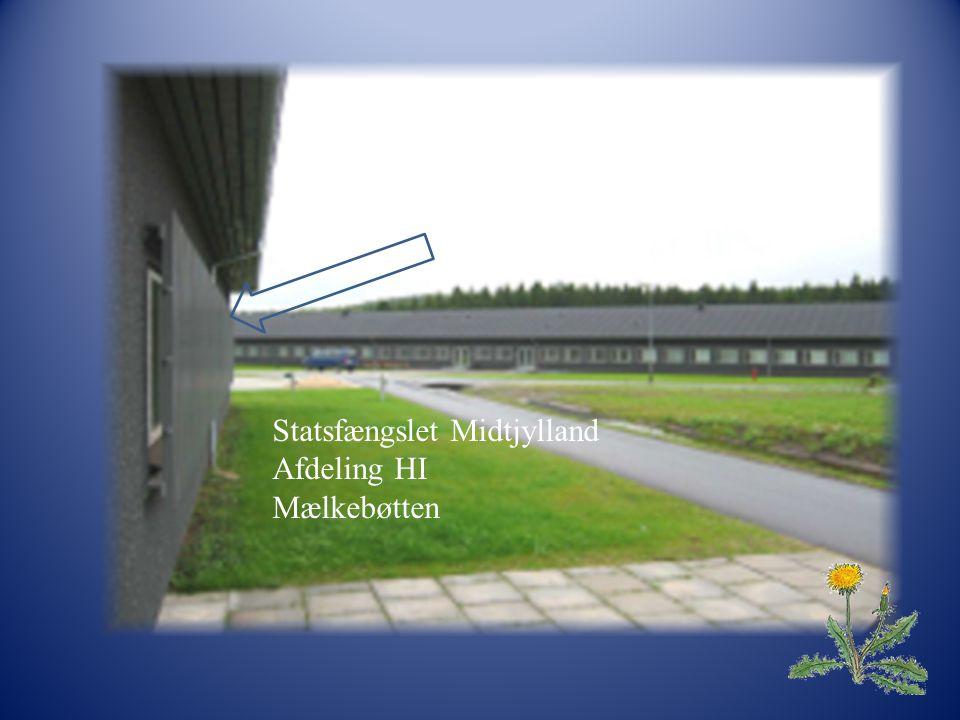 Statsfængslet Midtjylland Afdelingen H-I Vejlevej 45 8766 Nørre Snede 1 Statsfængslet Midtjylland Afdeling HI Mælkebøtten