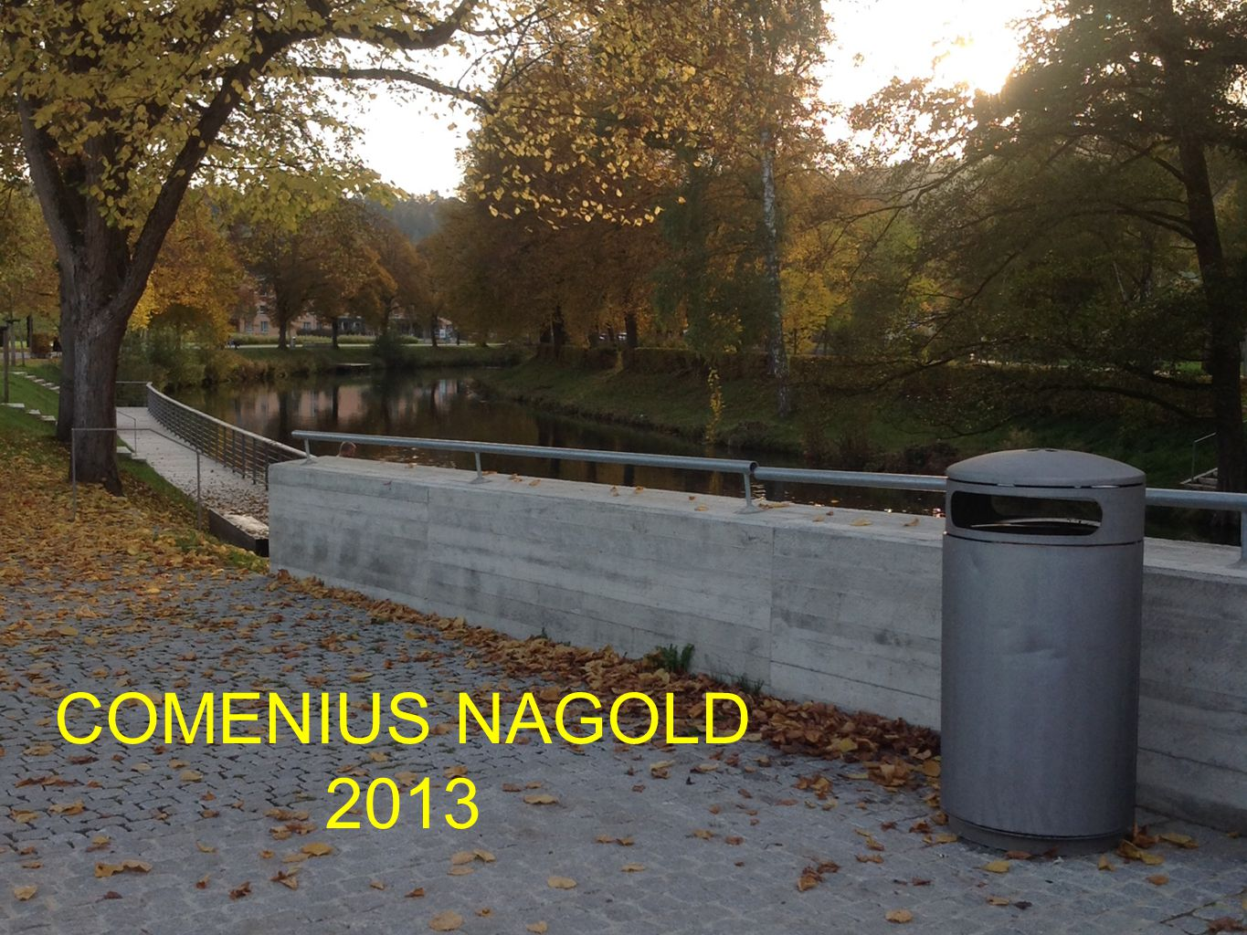 COMENIUS NAGOLD 2013